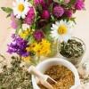 Какие травы пить для иммунитета