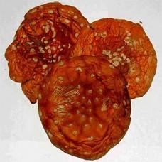 Мухомор гриб сушеный, 50г