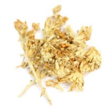 Панцерия шерстистая (трава), 50гр - купить