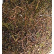 Шикша трава, 50г