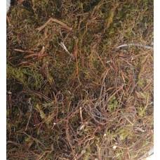 Шикша трава, 50г - купить